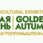 golden-autumn_2019