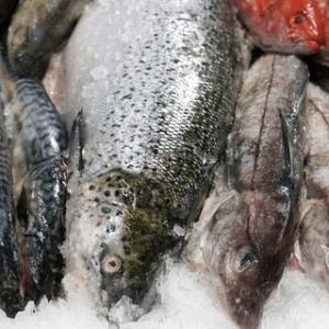 Активная антимикробная упаковка БИО ЗЕТ рыба
