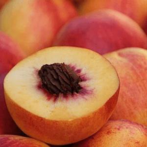 Активная антимикробная упаковка БИО ЗЕТ фрукты