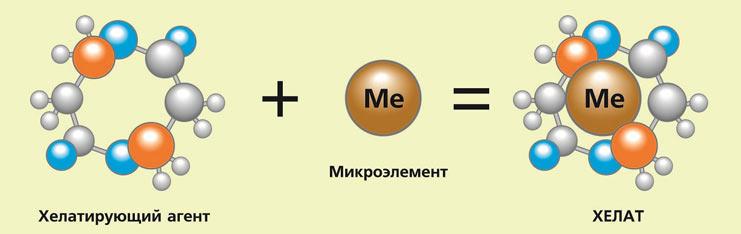АДВ активной упаковки БИО ЗЕТ